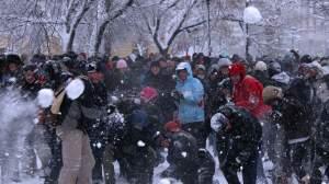 bitwa na sniezki mauerpark